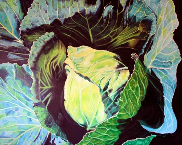 Cabbage (48 x 60) Oil on Canvas (I Grew it, I Drew it)