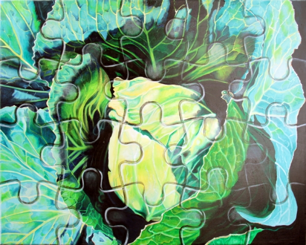 Puzzled Cabbage Head, (48 x 60) Oil on Canvas (I Grew it, I Drew It)
